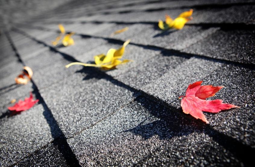 fall roof